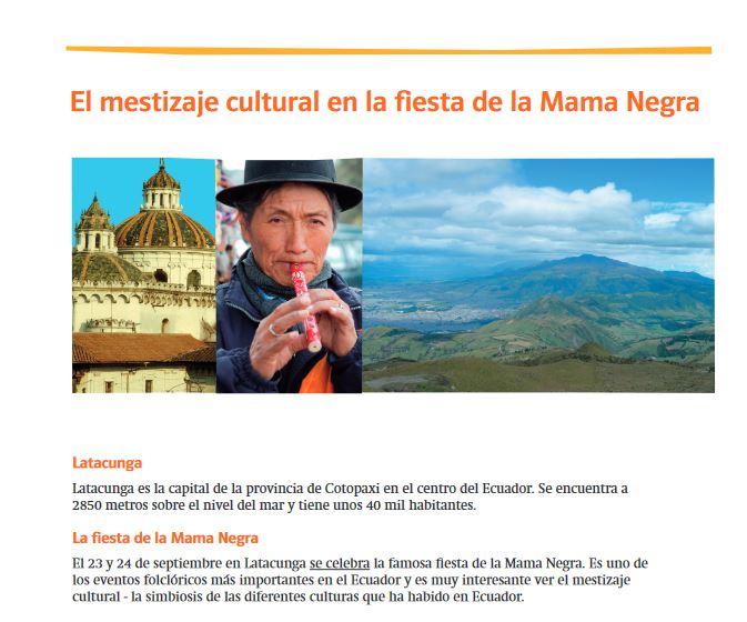 Cover: El mestizaje cultural en la fiesta de la Mama Negra