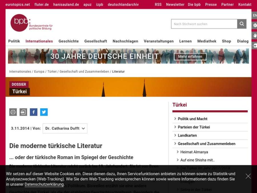 Cover: Die moderne türkische Literatur