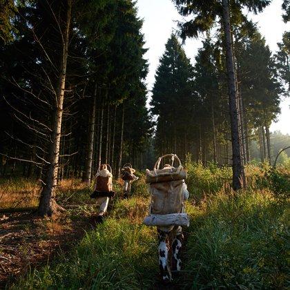 Cover: Mobilität in Stein- und Bronzezeit: Wie Wanderschaft den Fortschritt brachte