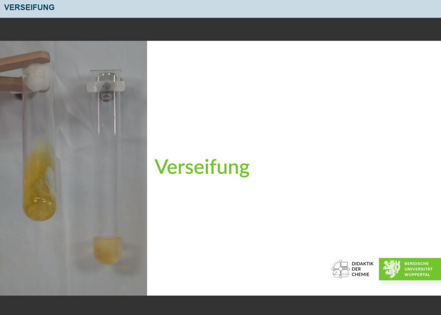 Cover: Verseifung