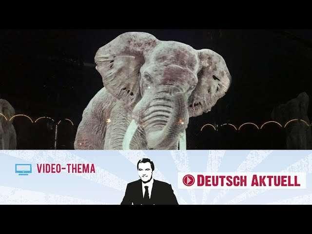 Cover: Hologramme als Zirkustiere   Deutsch lernen mit Videos