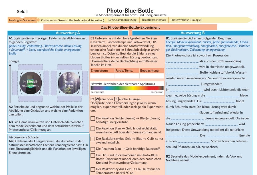 Cover: Unterrichtsidee zum Photo-Blue-Bottle-Experiment